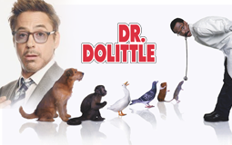 Robert Downey Jr en Dr Dolittle !
